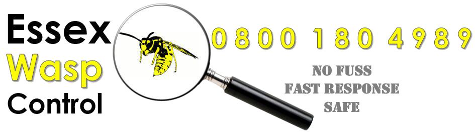 essex wasp control logo - 0800 180 4989: no fuss, fast response, safe